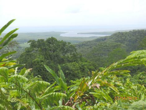 Daintree River flows into the Coral Sea