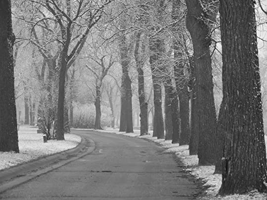 snowy_day_in_the_park_black_and_white_cvr_deviant_by_sfishffrog-d65h274
