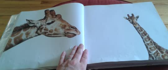 giraffe 2 pages