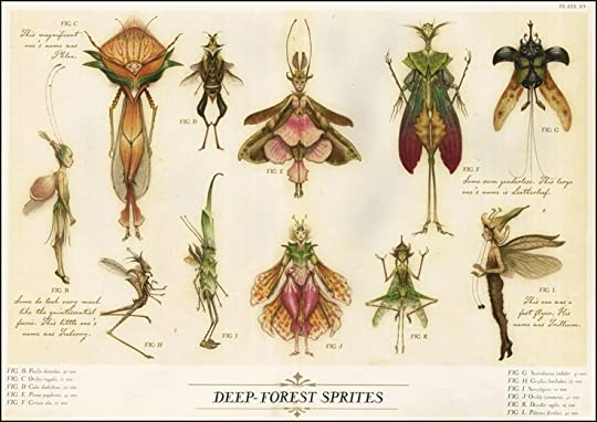 Image result for spiderwick field guide