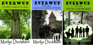 3 covers EVERWUD