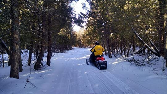 snowmobile in the woods: