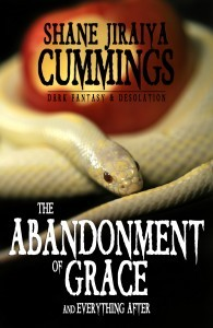 The Abandonment of Grace ebook
