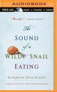 AudioBook COVER WS copy