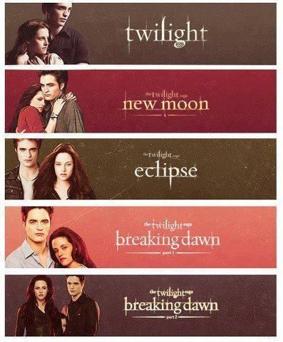 Image result for twilight book series