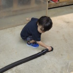 My littlest nephew, vacuuming the cellar. Hey, he had a great time!