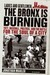 Ladies and Gentlemen, the Bronx is Burning 1977, Baseball, Politics, and the Battle for the Soul of a City by Jonathan Mahler