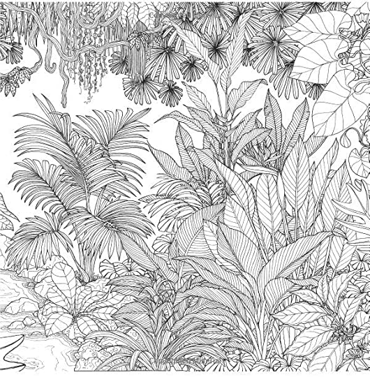 Rainforest escape my island animal exotic flower and for Rainforest plants coloring pages