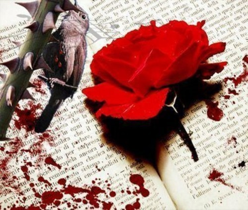 The Nightingale and the Rose by Oscar Wilde — Reviews, Discussion ...