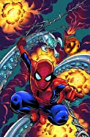 Spider-Man: The Other