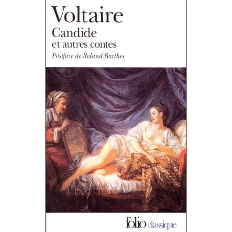 a summary and reaction to the novel candide by voltaire Free monkeynotes study guide summary-candide by voltaire-themes-theme analysis-free book notes chapter summary study guide online plot synopsis download.