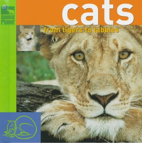 Cats: From Tigers to Tabbys  by  Inc. Discovery Communications