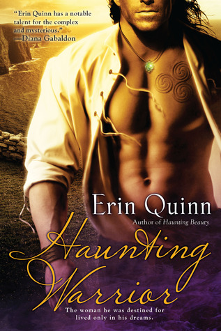 Haunting Warrior (Mists of Ireland, #2) Erin Quinn