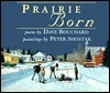 Prairie Born  by  David Bouchard