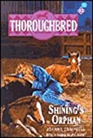 Shining's Orphan (Thoroughbred, #12)