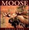Moose  by  Daniel Wood