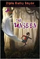 The Unseen the Unseen