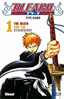 Bleach, Tome 1: The Death and the Strawberry
