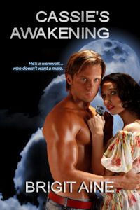 Cassies Awakening  by  Brigit Aine