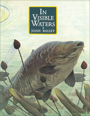 In Visible Waters  by  John Bailey