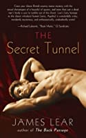 The Secret Tunnel (Mitch Mitchell Mystery, #2)