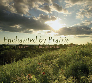Enchanted  by  Prairie by Bill Witt