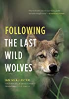 Following the Last Wild Wolves