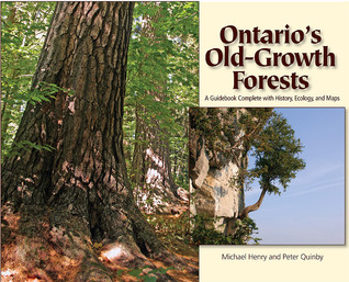 Ontarios Old Growth Forests  by  Michael   Henry