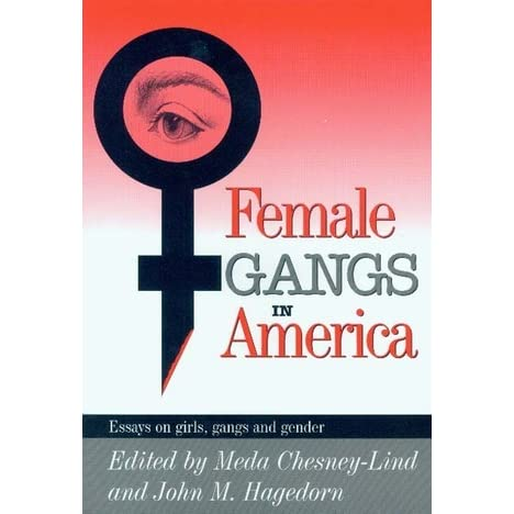 america essay female gang girl in America essay female gang girl in echoes of war video essay david swanson the sad part is my parents are very old and sometimes forget to ask about the price since.