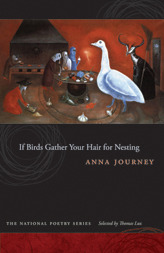 If Birds Gather Your Hair for Nesting Anna Journey