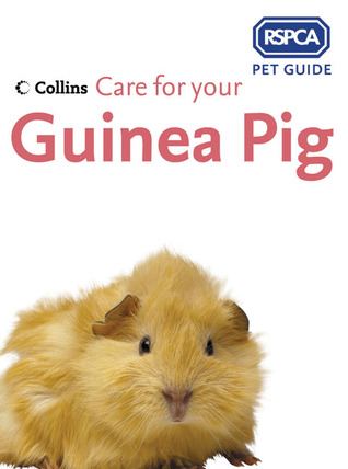 Care for Your Guinea Pig RSPCA