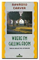 Where I'm Calling From: New and Selected Stories