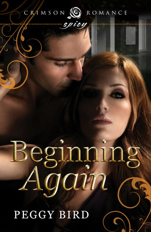 Beginning Again (Second Chance #1)  by  Peggy Bird