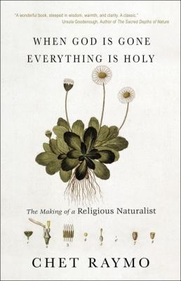 When God Is Gone, Everything Is Holy: The Making of a Religious Naturalist  by  Chet Raymo