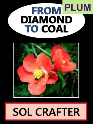 From Diamond to Coal 01 (From Diamond to Coal, #1) Sol Crafter