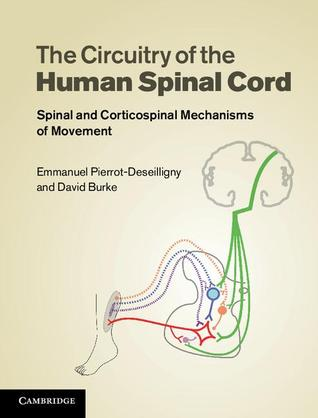 The Circuitry of the Human Spinal Cord: Its Role in Motor Control and Movement Disorders  by  Emmanuel Pierrot-Deseilligny