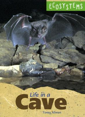 Life in a Cave  by  Toney Allman