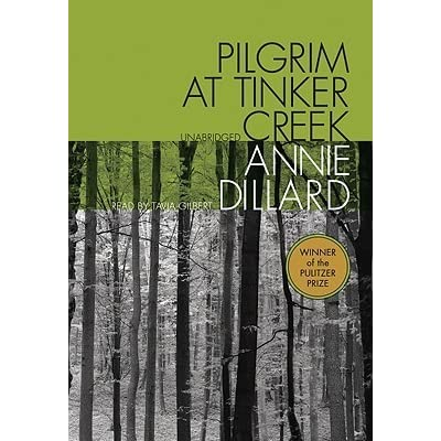 pilgrim at tinker creek Free summary and analysis of the events in annie dillard's pilgrim at tinker creek that won't make you snore we promise.