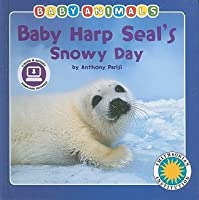 Baby Harp Seal's Snowy Day