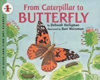 From Caterpillar to Butterfly (Let's Read and Find Out Science: Stage 1)