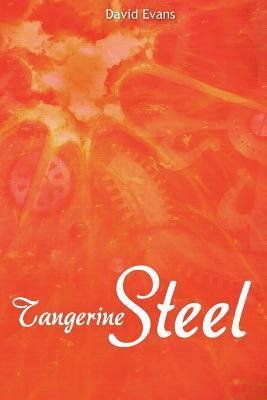 Tangerine Steel: A Life Story  by  David Evans