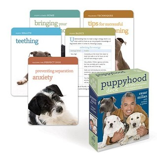 Puppyhood Deck: 50 Tips for Raising the Perfect Dog  by  Cesar Millan