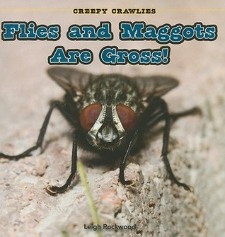 Flies and Maggots Are Gross!  by  Leigh Rockwood