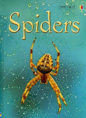 Spiders, Level 1: Internet Referenced  by  Rebecca Gilpin