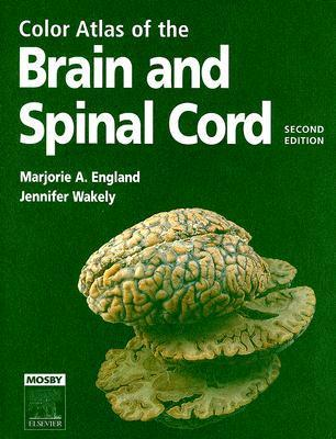 Color Atlas of the Brain and Spinal Cord: An Introduction to Normal Neuroanatomy  by  Marjorie A. England