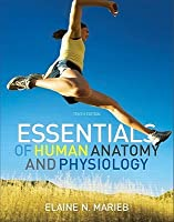 Essentials of Human Anatomy and Physiology with Essentials of Interactive Physiology CD-ROM (10th Edition)