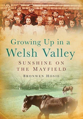 Sunshine On The Mayfield: Growing Up In A Welsh Valley  by  Bronwen Hosie