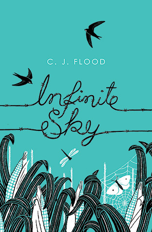 Infinite Sky C.J. Flood