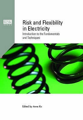 Risk And Flexibility In Electricity: Introduction To The Fundamentals And Techniques Anne Ku