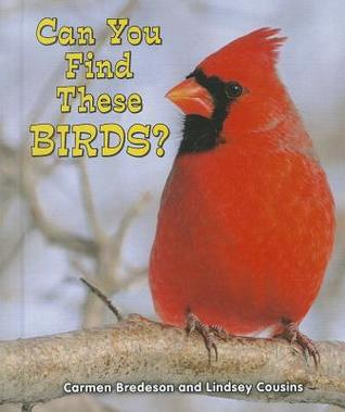 Can You Find These Birds?  by  Carmen Bredeson